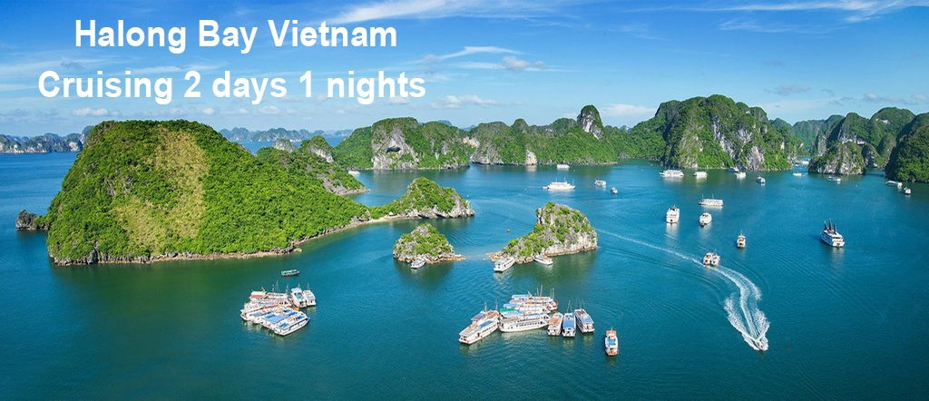 Halong Bay Cruise 2 days 1 night