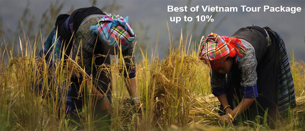 Best of Vietnam Tour Package